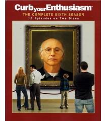 DVD - CURB YOUR ENTHUSIASM - SEXTA TEMPORADA COMPLETA - USADA