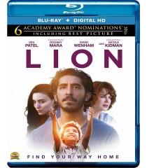 LION (UN CAMINO A CASA)