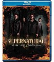 SUPERNATURAL - 12° TEMPORADA COMPLETA