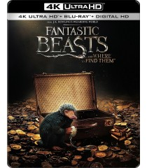 4K UHD - ANIMALES FANTÁSTICOS Y DONDE ENCONTRARLOS (EDICIÓN EXCLUSIVA STEELBOOK BEST BUY)
