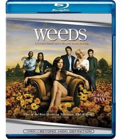 WEEDS - 2° TEMPORADA