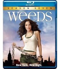 WEEDS - 7° TEMPORADA