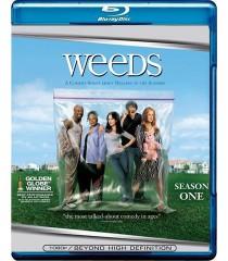 WEEDS - 1° TEMPORADA - USADA