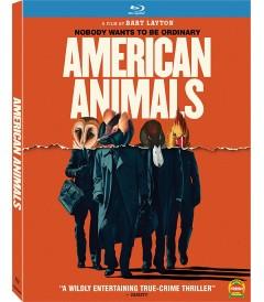 ANIMALES AMERICANOS (EL ASALTO)