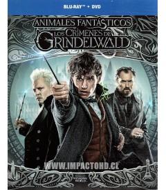 ANIMALES FANTÁSTICOS 2 (LOS CRÍMENES DE GRINDELWALD) (BD + DVD)
