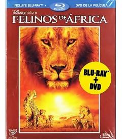 FELINOS DE ÁFRICA (*)