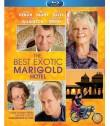 EL EXÓTICO HOTEL MARIGOLD - USADA