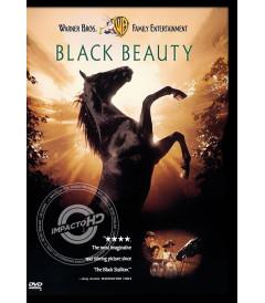 DVD - UN CABALLO LLAMADO FURIA (BLACK BEAUTY) - USADA