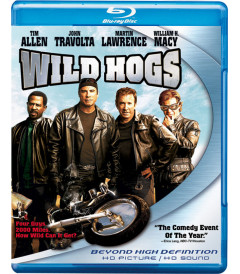 REBELDES CON CAUSA (WILD HOGS)