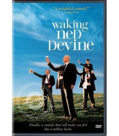DVD - EL DIVINO NED