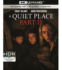 4K UHD - UN LUGAR EN SILENCIO (PARTE II)